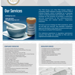 The FDA Group Flyer